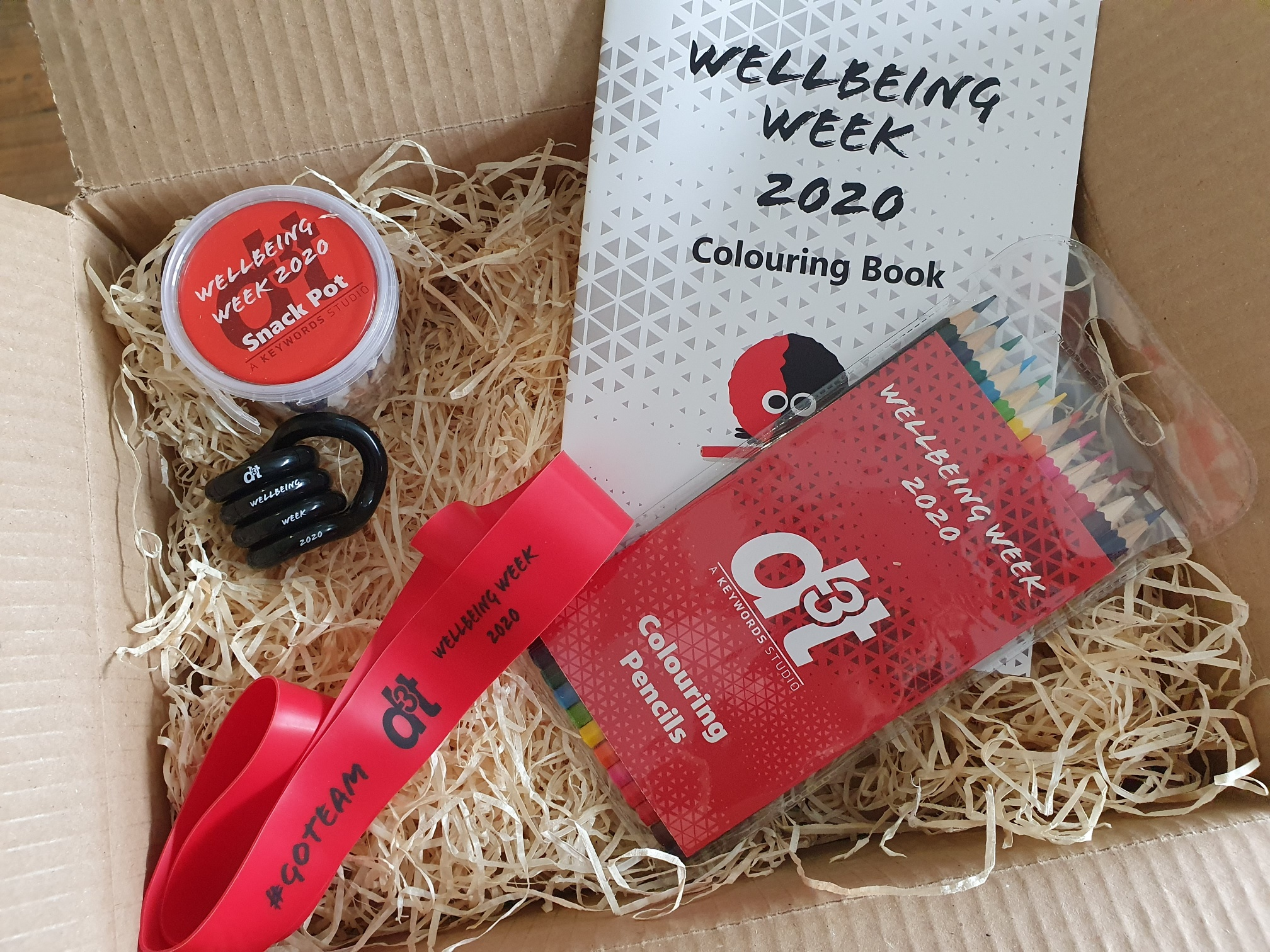 Wellbeing2020CP